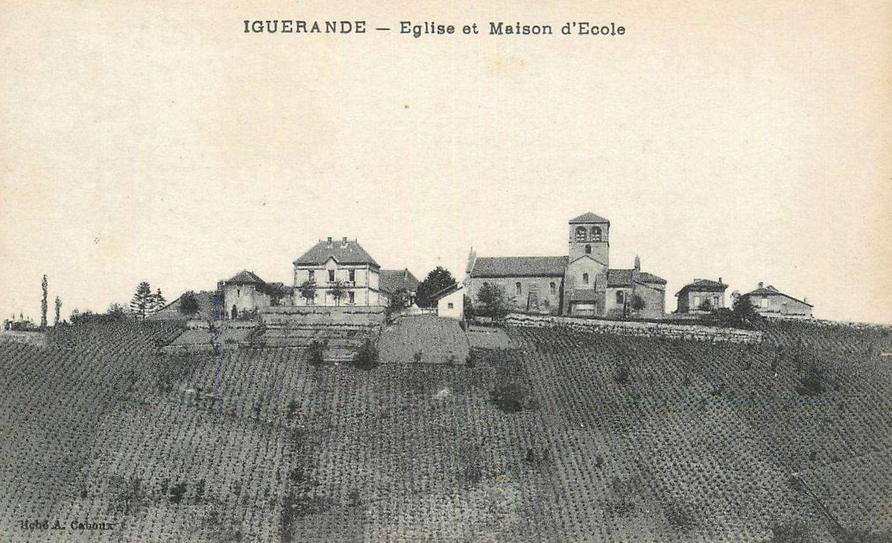 Rangs de vigne à Iguerande (71)
