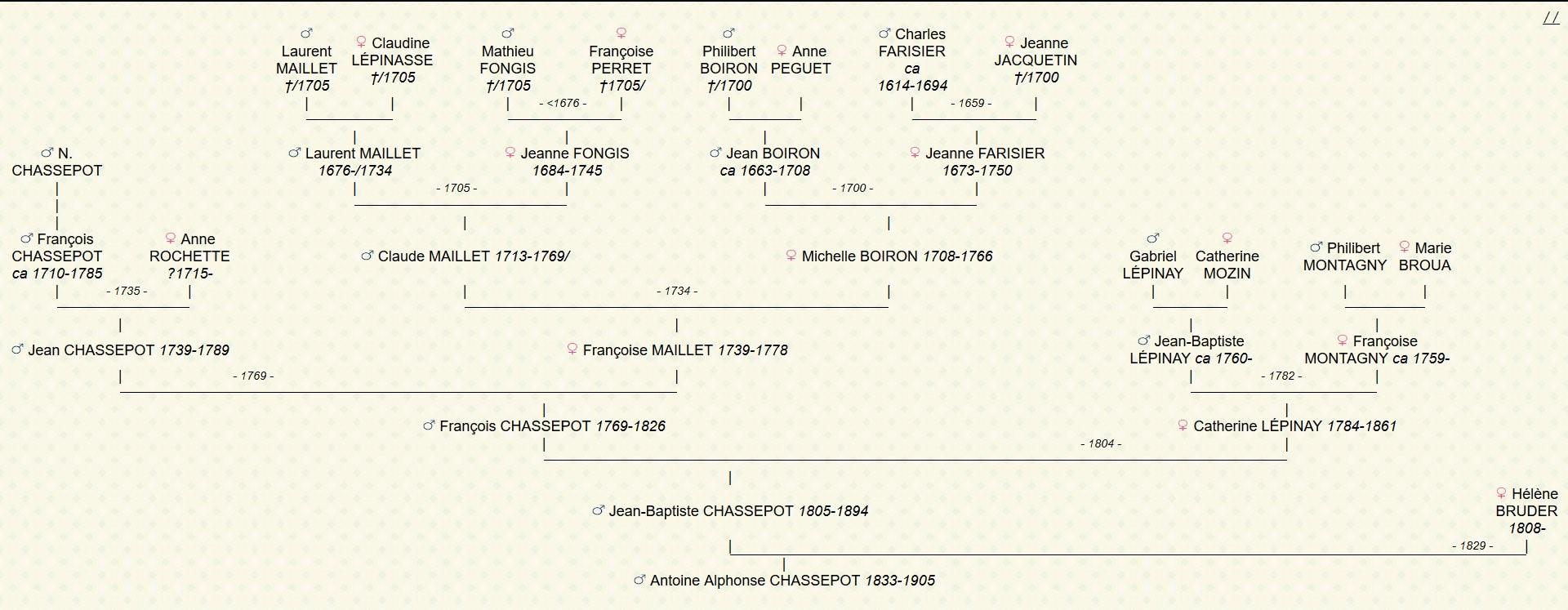 Arbre généalogique d'Antoine Alphonse CHASSEPOT